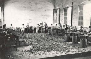 Fent taps amb una màquina de ribot Font: Museu del Suro de Palafrugell